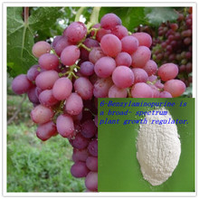Growth hormone for plants 6-BAP 6-Benzylaminopurine 6-bap plant growth hormone