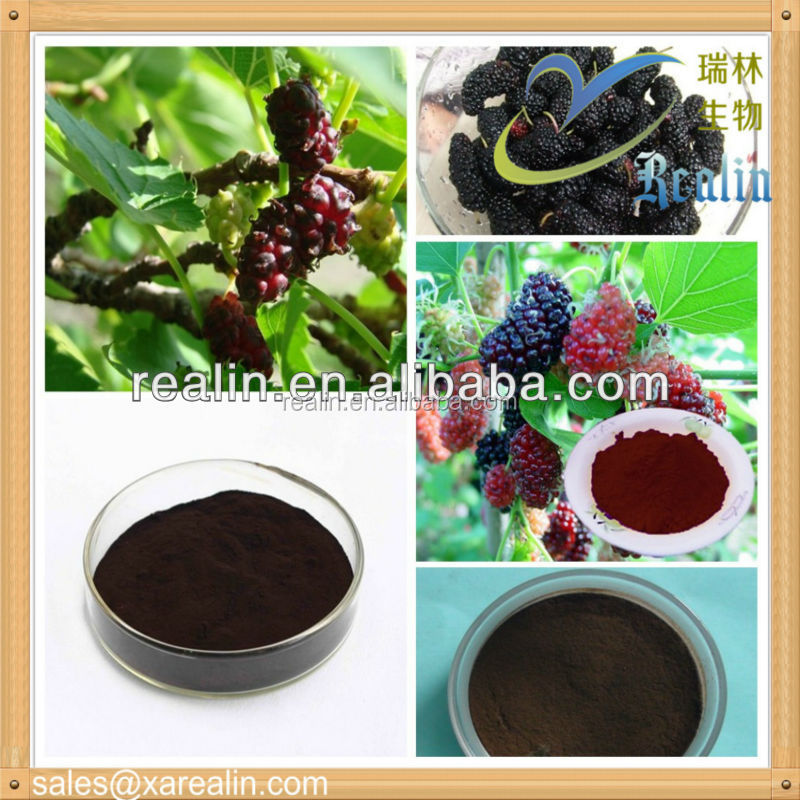 Mulberry Leaf Extract Powder Mulberry Leaf 1-Deoxynojirimycin