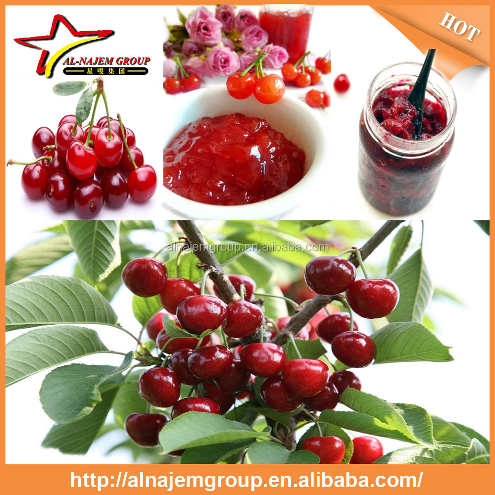 hot sale Full automatic industrial cherry sauce maker machine high viscosity Production Line rose paste