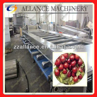 92 Dependable quality jujube seed separator machine