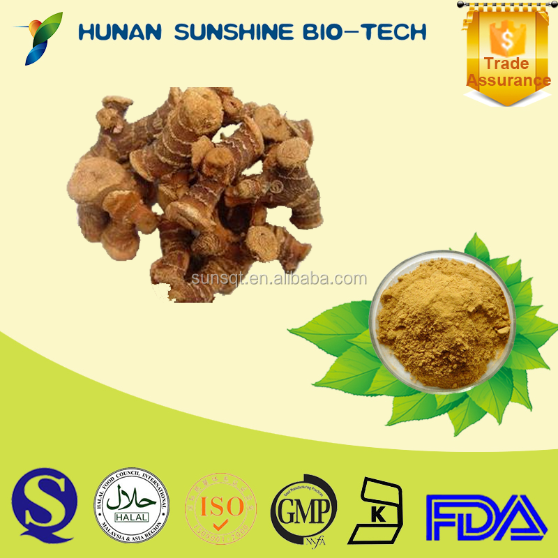 Best price of Galangal P.E. 10:1 Galangal extract