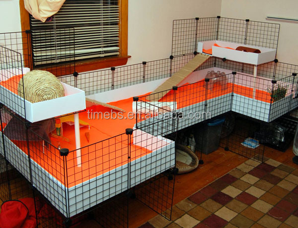 Pp corrugated coroplast plastic sheet pet cage for guinea for Buy guinea pig cage