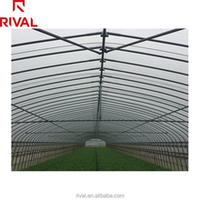 UV Resistant Commercial Agricultural Used Plastic Greenhouse Film For Sale