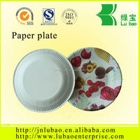 2016 Hot Sale disposable & recycled paper tray with printed picture