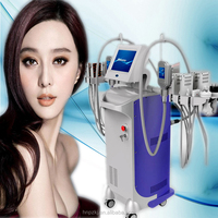 Affordable price factory price 2 handles cryolipolyse fat freezing aesthetic device cryolipolyse lipolaser
