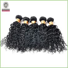 Double weft kinky curly crochet braids with human hair