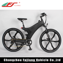 CE Certification electric motor bike, magnetic motor bike electric bicycle