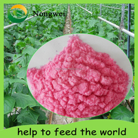 Kinds of Foliar Fertilizer NPK+TE Fertilizer