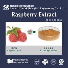 Free Samples Natural Raspberry extract 10:1