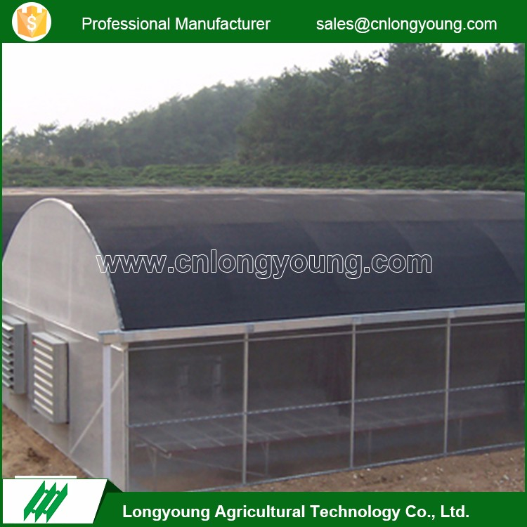 Low cost professional agriculture mushroom greenhouse with ISO 9001 certification