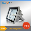 European Standard! 16 Colors Changeable DMX Rgb Outdoor Led Flood Light
