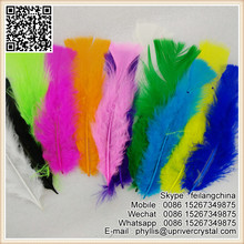 Wedding Fashionate Turkey Feather Hairclip