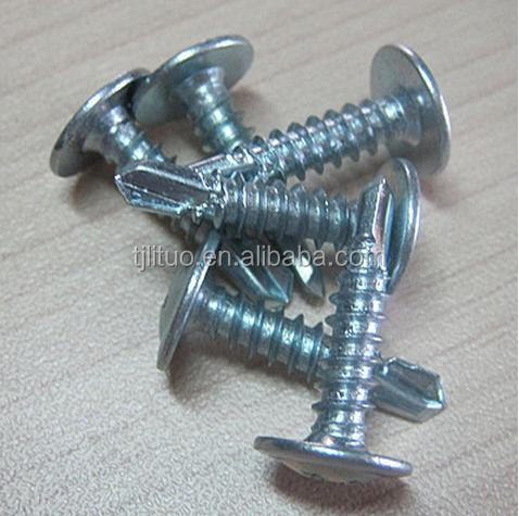 tianjin manufacturer phillip wafer head self drilling screw