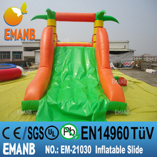 1398 USD inflatable dolphin water slide, inflatable water slide, giant inflatable water slide for adult