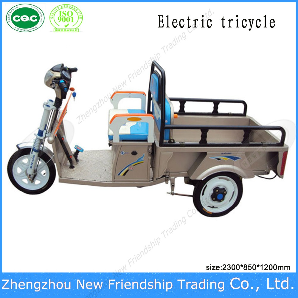Most popular 1000w 48v with ce approved classic tricycle