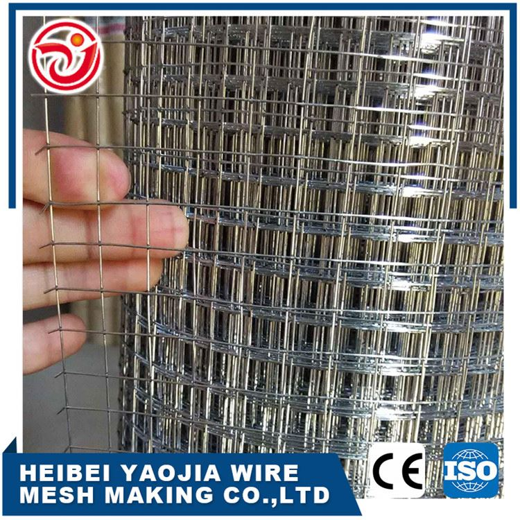 4x4 bird cage welded wire mesh roll garden gabion