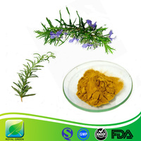 OEM Welcome High Active ingredients rosemary p.e.