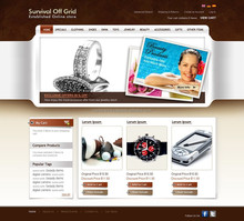 e commerce applications website development