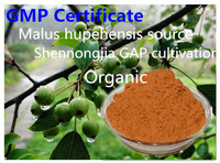 Organic Food grade Apple peel and apple pomace extracted Apple polyphenol