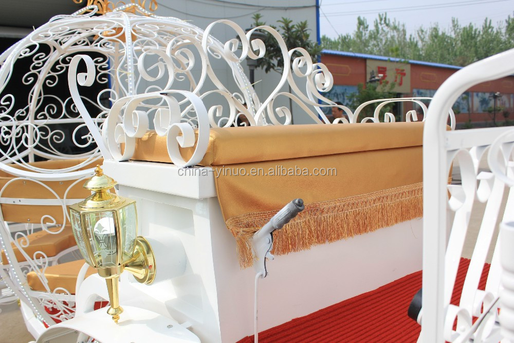Yizhinuo Romantic Cinderella Carriage Wedding Horse Carriage China Supplier