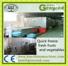 instant industrial cryogenic machine/ tunnel quick freezer