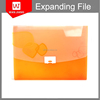 Printed PP Expandable File ,Carrying Expanding File for student