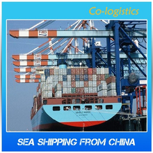 cheap sea freight rate by contaier from Shenzhen to Russian Federation---Vikey skype: colsales17