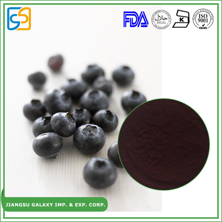 Top quality powder anthocyanidin bilberry fruit extract