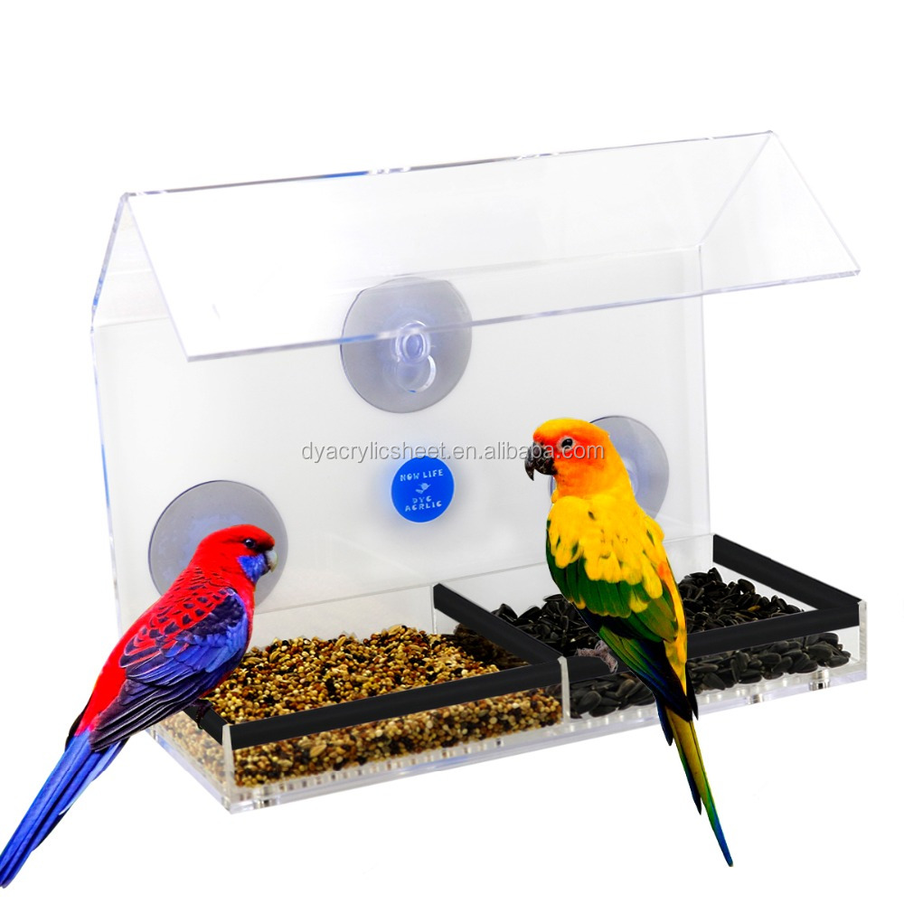 plate removable white products anywhere i window acrylic bird birds with easy feeder feeders view feed nature
