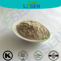 Superfood Quinoa flour powder