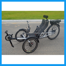 ZZMERCK M-009 Model Electric Recumbent Trike
