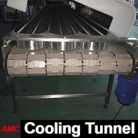 Crystallization Process Electrically Controlled paint Cooling Tunnel Machine For Industry Production Line