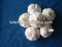 2014 new crop of fresh and natural garlic with competitive price and high quality