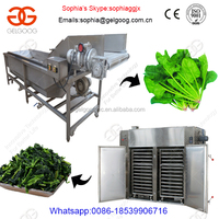 Automatic Carrot/Lecture/Green Salad Bubble Washing Machine|Leafy Vegetable Washer And Dryer Machine