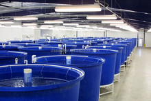 water tanks supplier/hatchery tanks/fiberglass fish tanks for sale