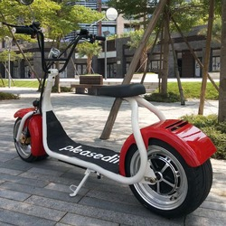 pleasedin sport electric scooter 2016 popular citycoco off road city scooter mobility motocycle