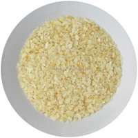cheapest dehydrated garlic granules from China manufacturer