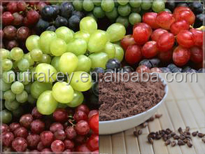 Pure Grape seed extract powder