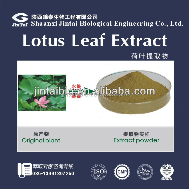 High quality Lotus Leaf extract ( Nuciferine 2% )