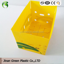 Vegetable Packing Corrugated Plastic Packaging Boxes
