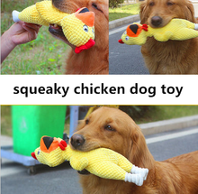FX9061T Hot selling plush toys long lasting squeaky chicken toys for dog