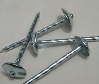 common iron roofing nails