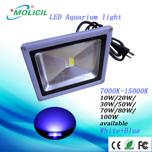 Chinese waterproof design 30W LED Aquarium Light, LED Flood Light for Jelly Fish, Seaweed, coral reef Lighting