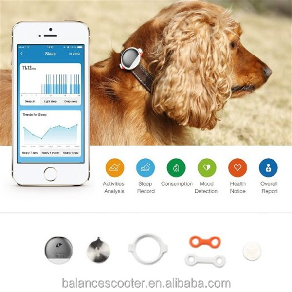 Pet products health monitor pet collars and tags aluminum alloy pet id tags