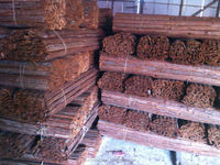 wholesale high quality eco-friendly wood bark fence roll