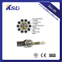 g.657.a2 single mode fibra optica cable 48 core shield wire opgw with pbt loose tube