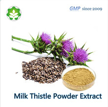 China wild herbal dietary supplement milk thistle seed extract medicine raw material for liver