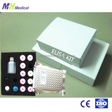 96 tests reagents T3 elisa kit