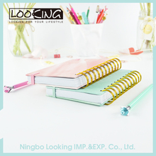 LOOKING Beautiful Spiral Notebook With Colored Paper
