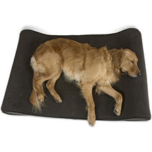 Breathable Standard Zipper Cover Foam Pet Dog Beds